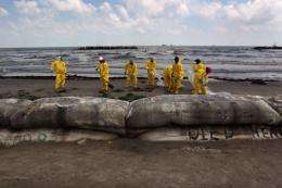 A BP cleanup crew removes oil from a beach on May 23, at Port Fourchon, Louisiana
