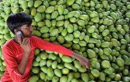 An Indian farmer talks on his mobile phone