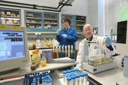 Argonne scientists seek natural remediation for uranium-rich sites