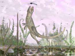 Mammal-like crocodile fossil found in East Africa, scientists report