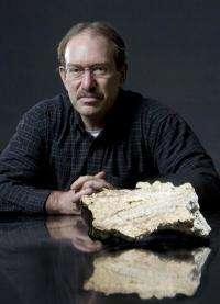 Researchers kick-start ancient DNA