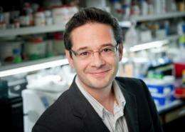 Scientists develop new genomics-based approach to understand origin of cancer subgroups