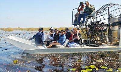 Taking a close look at the Everglades restoration