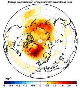 Trees invading warming Arctic will cause warming over entire region, study shows