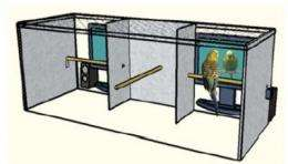 'Virtual mates' reveal role of romance in parrot calls