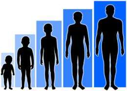 A 'giant' step toward explaining differences in height: Scientists map height 'hotspots' in the genome