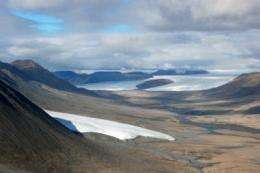 Ancient forest emerges mummified from the Arctic