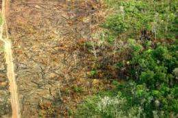 Fires in Amazon challenge emission reduction program