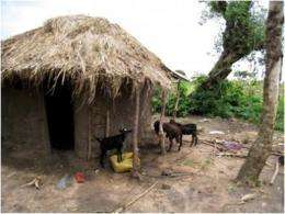 Infant hydrocephalus, seasonal and linked to farm animals in Uganda