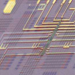 Researchers produce world's first programmable nanoprocessor