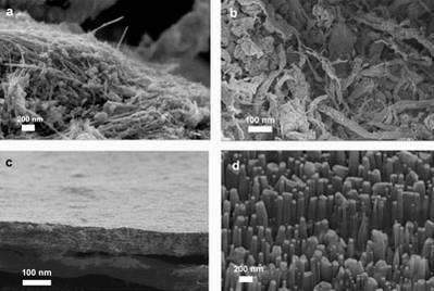 Scanning electron microscope images ....