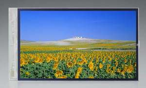 4.1-Inch System-on-Glass LCD Boasts Industry-Leading Picture Quality