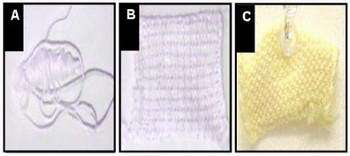 Self-cleaning 'Smart' Fabrics Capable of Environmental Toxin Remediation