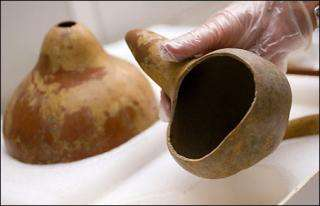 Ancient humans brought bottle gourds to Americas from Asia