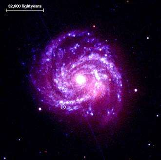 The supernova that just won't fade away