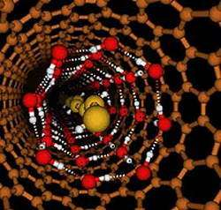 New form of water in a nanotube