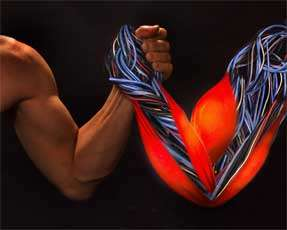 Artificial Muscles Get a Grip on Human Hand