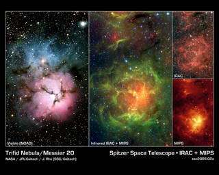 Spitzer Finds Stellar