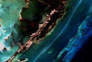 NASA Satellite Data Helps Assess the Health of Florida's Coral Reef