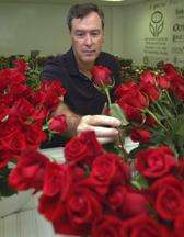 Mother's Day roses could soon smell sweeter, thanks to new research