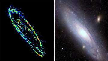 Cold Gas in the Andromeda Galaxy