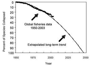Accelerating Loss of Ocean Species Threatens Human Well-Being