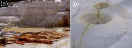 Large rock growth at geothermal hot springs