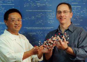 New Ways to Synthesize a Biomedically Important Molecule