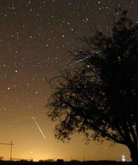 The 2006 Geminid Meteor Shower