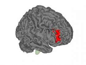 Researchers Demonstrate How Placebo Effect Works in the Brain