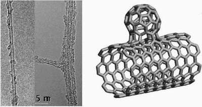 New Nanomaterial, 'NanoBuds,' Combines Fullerenes and Nanotubes