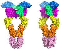 First Detailed View of Molecular Structure May Usher in New Class of Cancer Drugs