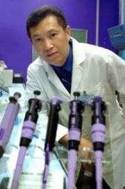 Green tea may help prevent autoimmune diseases