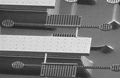 Nanosoccer debuts at RoboCup 2007