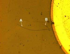 Nanowire LED Micrograph