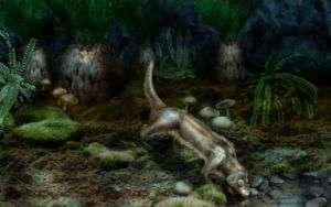 Paleontologists Discover New Mammal from Mesozoic Era