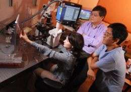 Researchers show evidence of 'memory' in cells and molecules