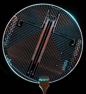 The beauty of the pursuit of knowledge as seen in this 'lab on a chip'
