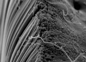 Toxic Byproducts of Carbon Nanotube Manufacturing