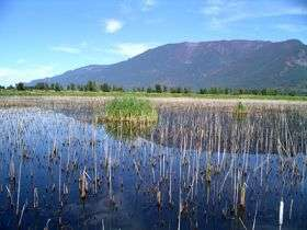 Connection between health of wetlands and humans in focus