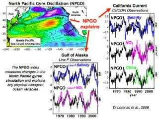 Scientists discover new ocean current