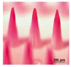 Microneedles Could Replace Syringe