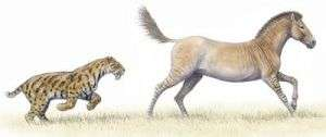 Big predatory mammals such as felines need between 5 and 7 different types of prey to meet their dietary needs