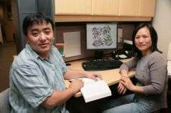 Computational Biochemist Uncovers Molecular Clue to Evolution