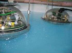 Digital Optical Detectors in IceTop