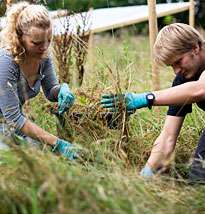 Field of the future -- ecological experiment simulates conditions in 2100