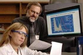 Fireflies' glow helps UT Southwestern researchers track cancer drug's effectiveness