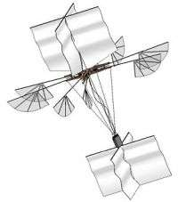 Flapping wing vehicle improves on the a helicopter