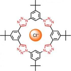 Mini-Donut Catches Chloride Ions