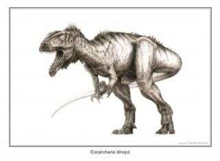 New meat-eating dinosaur duo from Sahara ate like hyenas, sharks
